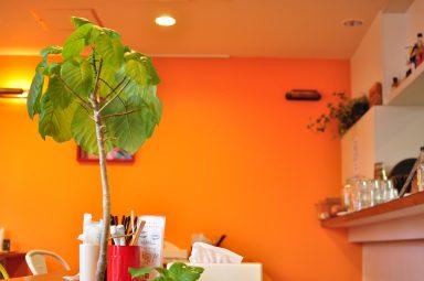 オレンジキッチン