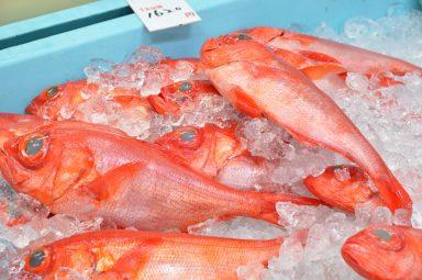 沖縄市漁業協同組合パヤオ直売所 / パヤオ食堂